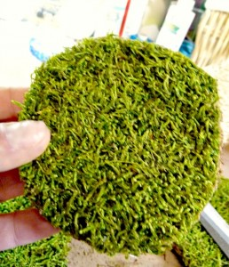 Moss covered chipboard