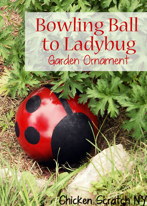 Bowling Ball to Ladybug Garden Ornament from Chicken Scratch