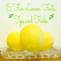 15 Fun Lemon Facts, Tips and Tricks! At Little Miss Celebration