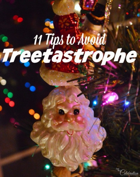 Ah, the joy of the live Christmas tree! 11 Tips to Avoid Treetastrophe at littlemisscelebration.com