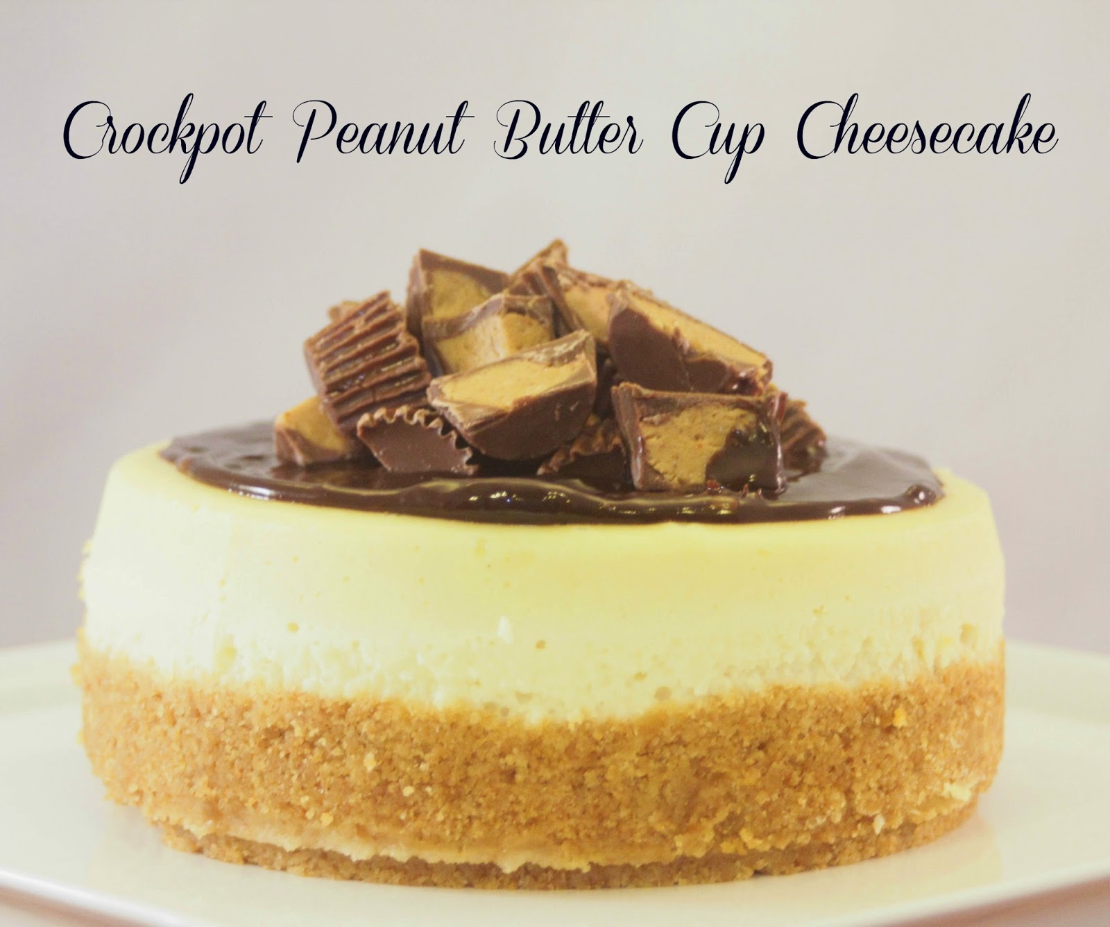 Crockpot Peanut Butter Cup Cheesecake from Crazy for Cookies and More