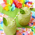 Blend up a crisp, refreshing and family-friendly summer treat! Fresh mint syrup makes Ginger Mint Slushies an easy summer treat! Recipes at littlemisscelebration.com