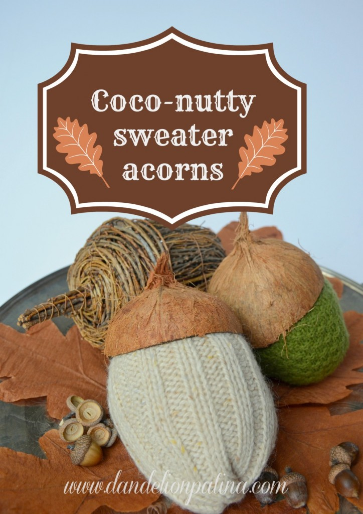Coco-nutty Sweater Acorns from Dandelion Patina
