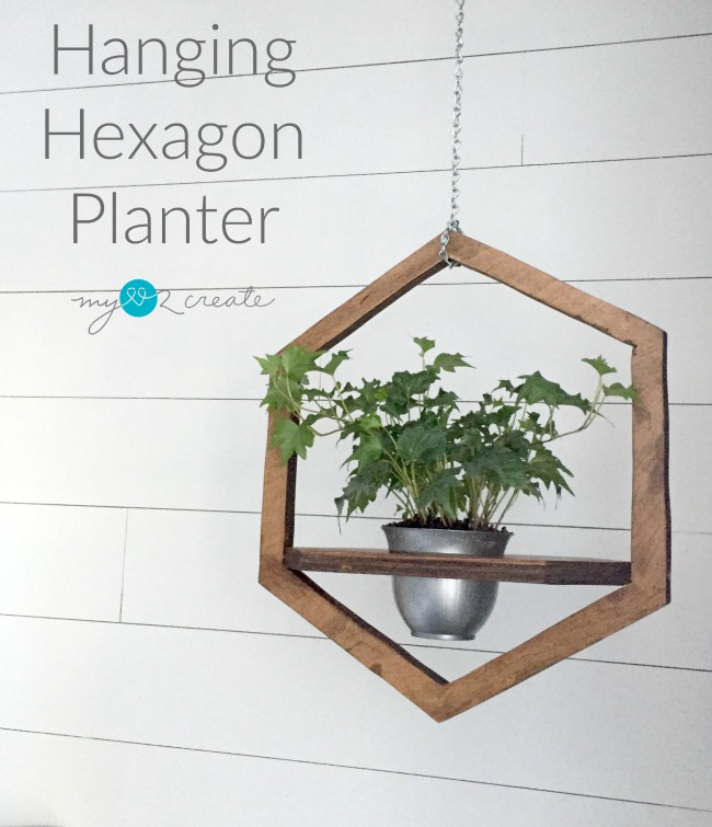 Hanging Hexagon Planter from My Love 2 Create