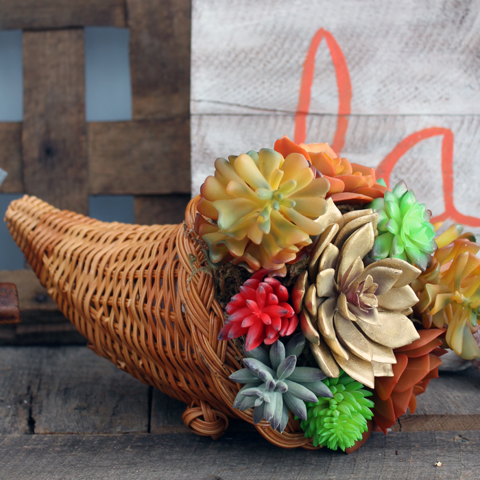 Succulent Cornucopia for Thanksgiving from The Country Chic Cottage