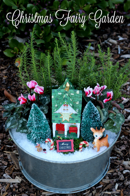 Christmas Fairy Garden from Gluesticks