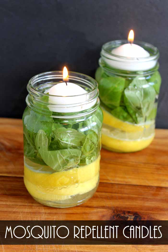 Make Mosquito Repellent Candles from The Country Chic Cottage